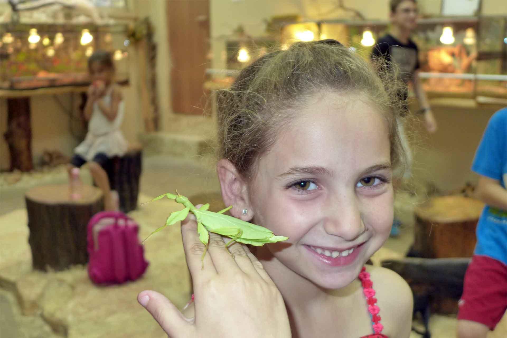 זוחרקים